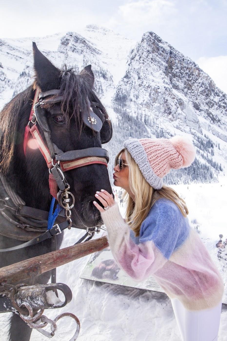 sleigh ride horse